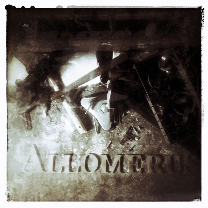Allomerus